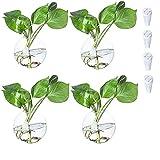Florero de cristal para colgar en la pared, diseño de terrarios, para pared, para interiores, plantas, para decoración de pared, 4 unidades (jarrón redondo)