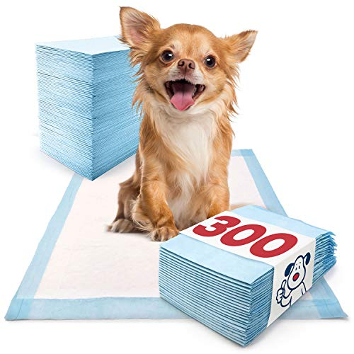 Dog Pads 300 Count