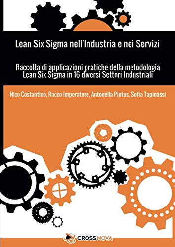 Lean Six Sigma nell'Industria e nei Servizi: Raccolta di applicazioni pratiche della metodologia Lean Six Sigma in 16 diversi settori industriali