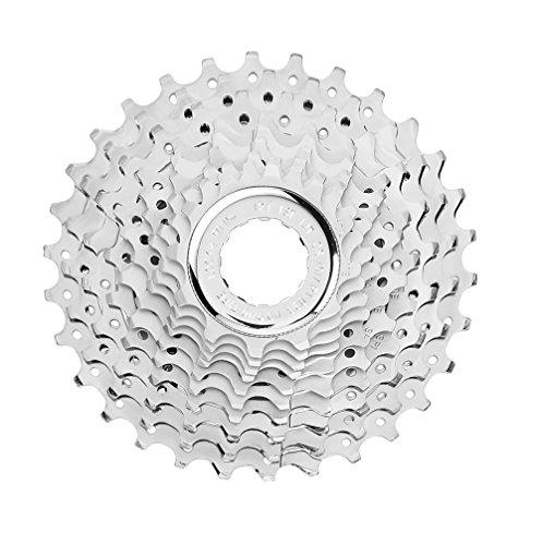 Campagnolo - Cassette de Ciclismo
