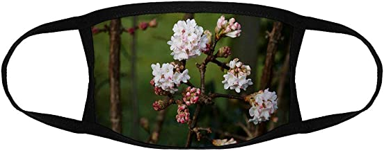 Viburnum Bodnantense/Reusable Face Mouth Scarf Cover Protection №IS144013