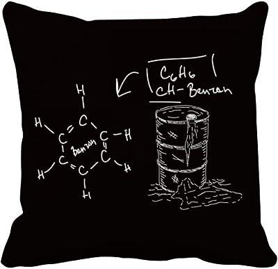 Amazon.com: DIYthinker Chemistry Kowledge Acid Throw Pillow ...