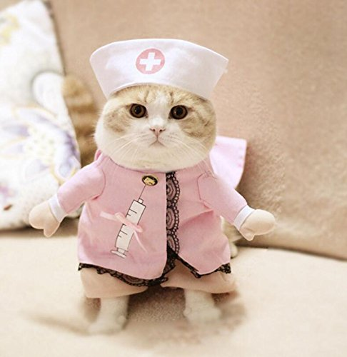 LadyBeauty Disfraz de Mascota Convertido en Ropa para Gatos Talla 5