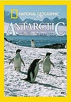 National Geographic: Antarctic Wildlife Adventure [DVD]
