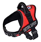 Just 4 Paws Service Dog Harness Jacket with Padded Handle, Adjustable Straps & 2 Removable Reflective Patches | Plus 50 ADA Information Cards (6 (Medium, Red)