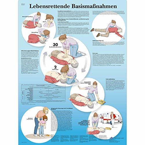 3B Scientific Lehrtafel laminiert - Lebensrettende Basismaßnahmen