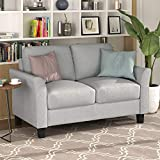Harper&Bright Designs Living Room Furniture Loveseat Sofa Double Seat Sofa (Light Gray)
