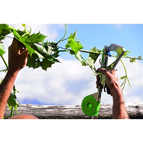 Stocker 8016604020551 Legatrice stocktap-Attrezzi manuali Giardinaggio Legature, Multicolore, Unica