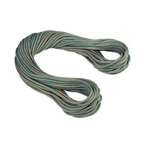 Mammut Cuerda Simple 9.9 Crag Workhorse, Adultos Unisex, Dry Standard, Boa/Ocean (Multicolor),...