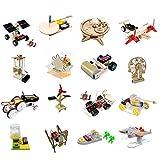 Bicaquu Kit de Juguetes educativos, 16 Piezas de Madera, Juego de Aprendizaje científico, para niños Junior(Elementary School Set Six [16-Piece Set])
