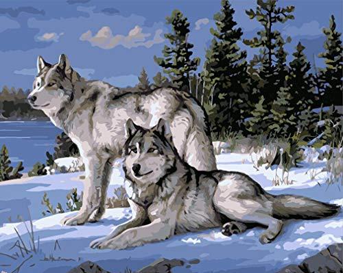 WONZOM Malen nach Zahlen DIY Acryl Gemälde Kit für Kinder & Erwachsene Anfänger - 16x20 Zoll Wild Wolf mit 3 Pinseln & Acrylfarben