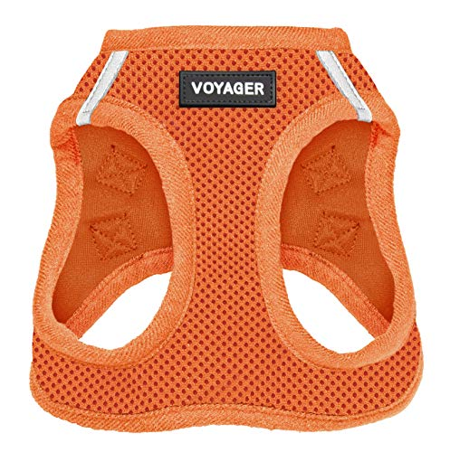 Best Pet Supplies Voyager Step-in Air Dog Harness - All Weather Mesh, Step in Vest Harness for Small and Medium Dogs Orange (Matching Trim), S (Chest: 14.5-17