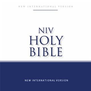 NIV Bible Free