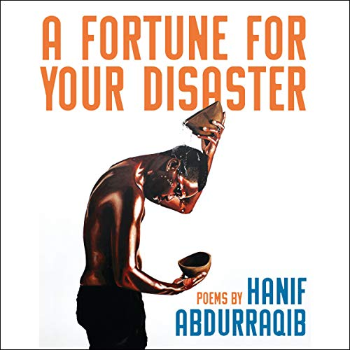 A Fortune for Your Disaster cover art