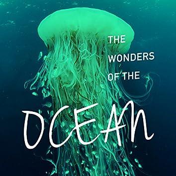 The Wonders of the Ocean