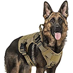 Image: Rabbitgoo Tactical Harness Vest Large with Handle, Military Dog Harness Working Dog Vest with MOLLE and Loop Panels, No-Pull Adjustable Training Vest with Metal Buckles and Leash Clips for Outdoor Hiking