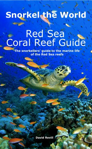 Snorkel the World: Red Sea Coral Reef Guide (English Edition)
