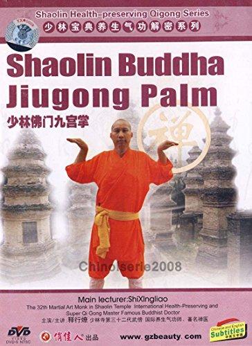 Shaolin Health Preserving Qigong Shao Buddha Jiugong Palm by Shi Xingliao DVD