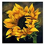 Diamond Painting Kits for Adults DIY 5D Square Diamond Painting for Kids Diamond Painting Kit for Home Wall Decoration (Sunflower, 11.8X11.8in)
