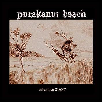 Purakanui Beach