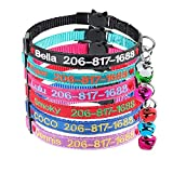 Custom Breakaway Cat collar personalized with bell Heart