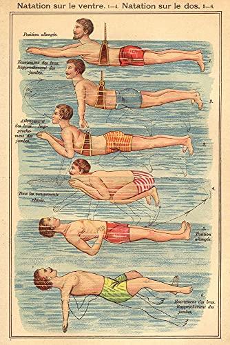 Close Up Natation Poster nach Friedrich Eduard Bilz Anleitung zum Bauch- und Rückenschwimmen 61 cm x 91,5 cm - Vintage Plakat