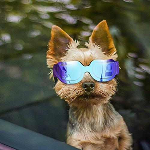 PETLESO Hundesonnenbrille Hundebrille Sonnenbrillen für Hunde UV-Schutz wasserdichte Sonnenbrillen für kleine mittlere Hund oder Katze