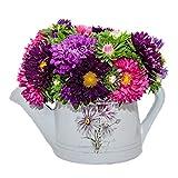 Seme di aster nano, fiore grande, doppio petalo, seme della stagione primaverile 300 grani