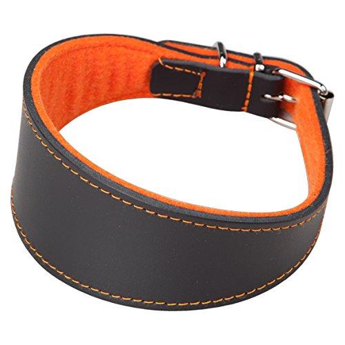 Arppe 2154014506 Collar Galgo Cuero Superfelt, Negro y Naranja ✅