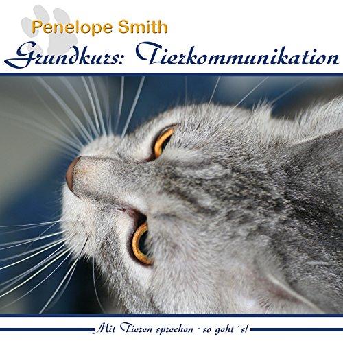 Grundkurs - Tierkommunikation Titelbild