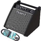 Roland PM-100 - Caja para monitor de batería eléctrica y miniclavija estéreo...