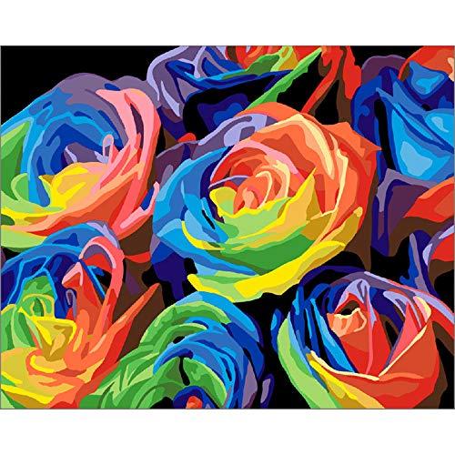 DIY Pintura por Números Rosas de colores Pintar por número de kit for Adultos Mayores Avanzada Niños Joven 40x50cm Sin Marco