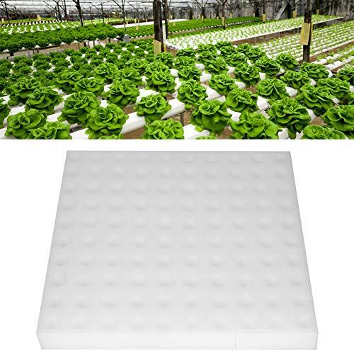 Hydroponischer Schwamm, 100Pcs Hydroponik Samen Wachsende Mittel Schwämme, die Gartenarbeit Werkzeug für Kleines Knospen Wachstum Pflanzen oder Sämlinge Wachsen