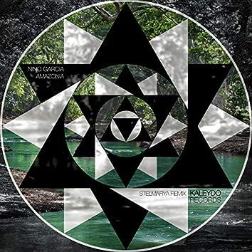 Amazonia (Stelmarya Remix)