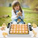 TTLIFE Incubatrice di Uova 24 LED Incubatrice automatica per uova ad alta efficienza con rotazione automatica delle uova/Controllo automatico dell'umidità /Funzione del ciclo di controllo del vento