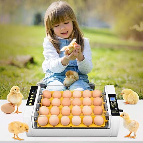 Incubateur Oeuf Automatique,TTLIFE 24 Incubateur avec Fonction de Retournement des œufs Contrôle de la Température Turner/Incubateur Ventilé Poulet/Caille/Oie/Dinde/Corbeau/Perroquet
