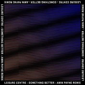 Something Better (Amin Payne Remix) [feat. Amin Payne]