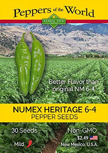 Green Chile NuMex 6-4 Heritage Hatch Variety - 30 Seeds- Mild - NonGMO