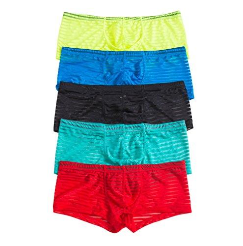 Sexy Herren Dessous Bikini Slips Unterwäsche Mesh Low Rise Shorts Höschen 5er Pack Gr. X-Large, Schwarz & Blau & Gelb & Grün & Rot