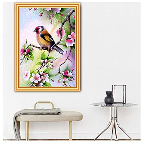 DIY Diamant Painting Bilder Voll Kits für Erwachsene Kinder Bird and Flowers 5D Diamond Painting Full Set Kristall Strass Stickerei Kreuzstich für Home Wall Decor -Square Drill,15.7x19.6inch/40x50cm