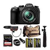 Best Panasonic Pro Cameras - Panasonic LUMIX FZ1000 II 4K 16x Long Zoom Review