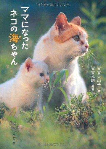 ([い]3-1)ママになったネコの海ちゃん (ポプラ文庫)の詳細を見る
