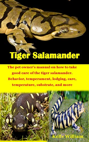 TIGER SALAMANDER: The pet owner's manual on how to take good care of the tiger salamander. Behavior, temperament, lodging, care, temperature, substrate, and more (English Edition)