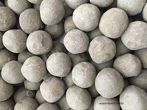 Lot de 40 balles ugeln – Engrais Plante Top croissance des plantes avec noyau NPK Aquarium sol engrais Fer Engrais traités par exemple pour Amazonas