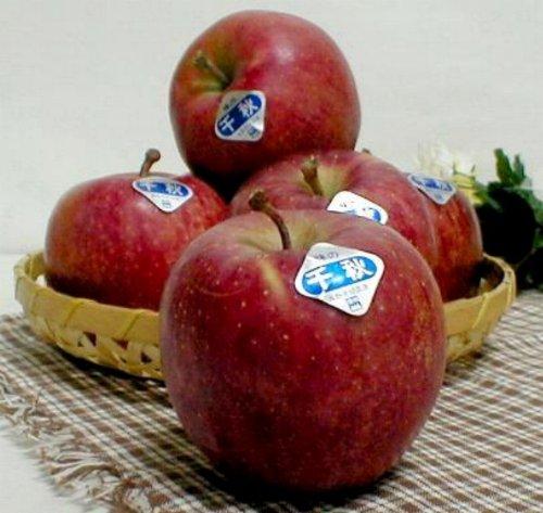 秋田・長野産 千秋 せんしゅう りんご10kg 中玉36〜40個入り