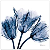 Empire Art Direct Blue Tulip X-Ray Flower Wall Art on Frameless Free Floating Tempered Glass Panel Ready to Hang, Living Room, Bedroom & Office, 24' x 24' x 0.2'