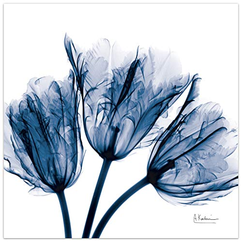 Empire Art Direct Blue Tulip X-Ray Flower Wall Art on Frameless Free Floating Tempered Glass Panel Ready to Hang, Living Room, Bedroom & Office, 24