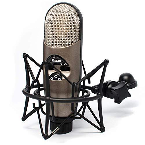 CAD Audio Equitek M179 Large Diaphragm Infinitely Adjustable Polar Pattern Condenser Microphone