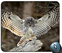鳥の写真フクロウの羽の羽おしゃれスリップ防止マウスパッドアンチスリップデスクトップおしゃれスリップ防止マウスパッドゲーミングおしゃれスリップ防止マウスパッド