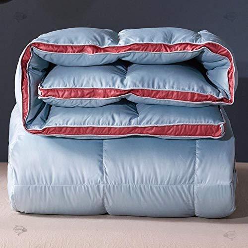 CHOU DAN EdredóN De Fibra,Duvet Full Size,Duvet Twin All-Season Luxury Duvet Full-Size/Large Duvet 200x230 4000g